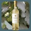 Varietales Sauvignon Blanc